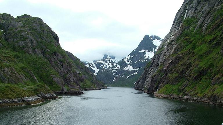 Der Trollfjord (Lofoten) im Juni 2005 (Foto: Creative Commons http://bit.ly/1JUfGee)