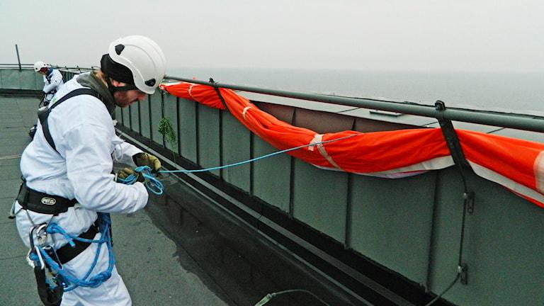 (Foto: Greenpeace/TT)