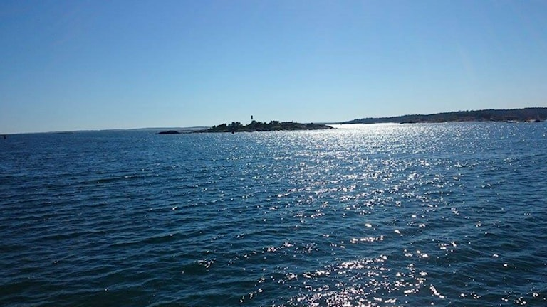 Schären Ostsee Wasser Forschung Sauerstoff