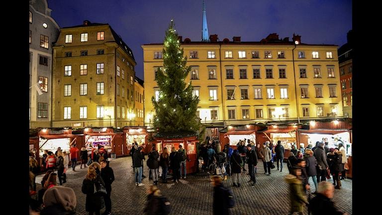 Weihnachtsmarkt Stockholm (Foto: Fredrik Sandberg/TT)