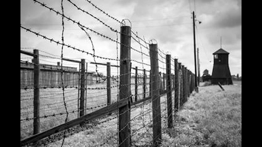 Sar ikerdape e memoracia pa o Holocaust ani Spania