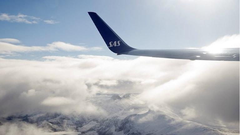 Scandinavian Airlines, SAS, crdal paluni gazeta. Foto: Håkon Mosvold Larsen/TT.