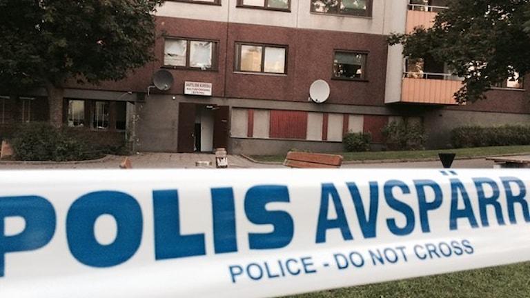 Foto  Anders Hildemar Ohlsson Sveriges Radio