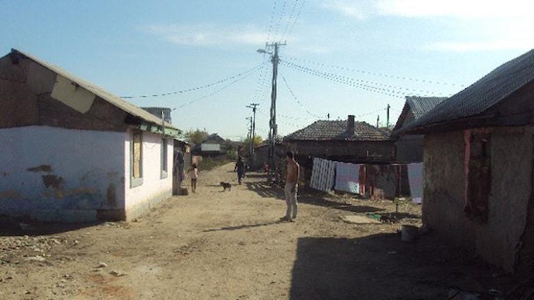 Jekh gav ande Rumunia Foto: Linda Stomberg.