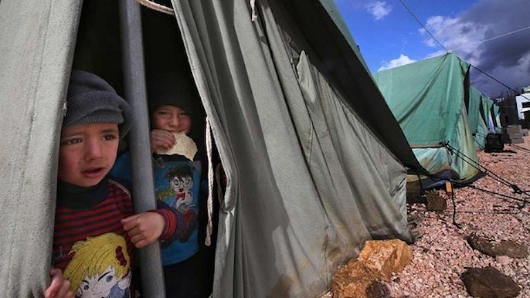Drygt en femtedel av biståndsbudgeten beräknas 2015 gå till flyktingmottagande i Sverige. Foto: Hussein Malla/Scanpix.