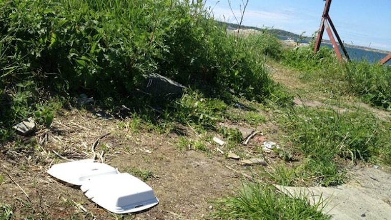 Problemet med nedskräpning är inte nytt - så här har det sett ut tidigare i Fiskebäck. Foto: Mattias Bolin/Sveriges Radio.