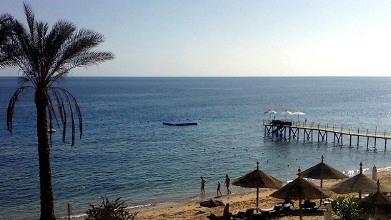 Sharm el-Sheik.  Foto: TT.
