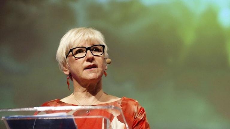 Margot Wallström (Foto: Adam Ihse / TT)