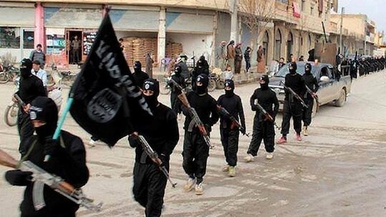 En hel del svenskar krigar för Isis räkning. Det är bland andra deras resor man nu vill sätta stopp för. Foto: TT.