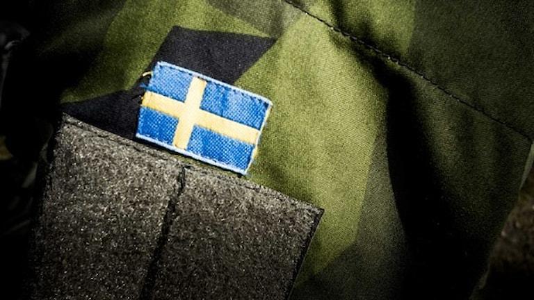 Foto: Magnus Hjalmarson Neideman/SvD/TT.
