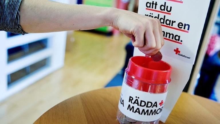 En insamlingsbössa för Röda korsets kampanj Rädda Mammorna. Foto: Erik Abel/TT