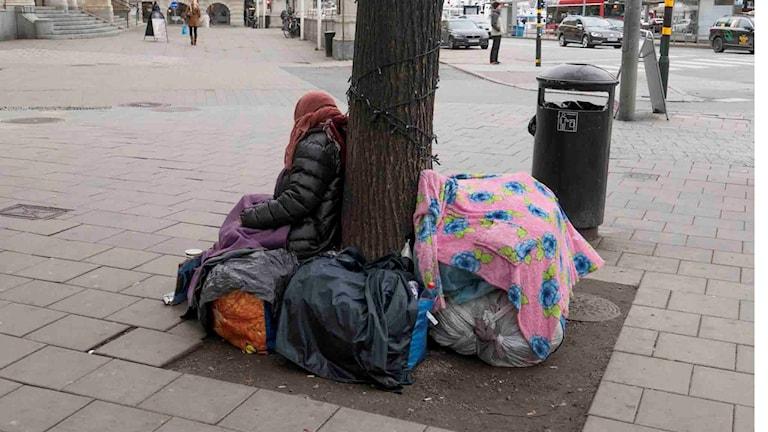 tiggande kvinna sitter mot ett träd. Foto Leif Blom / TT kod