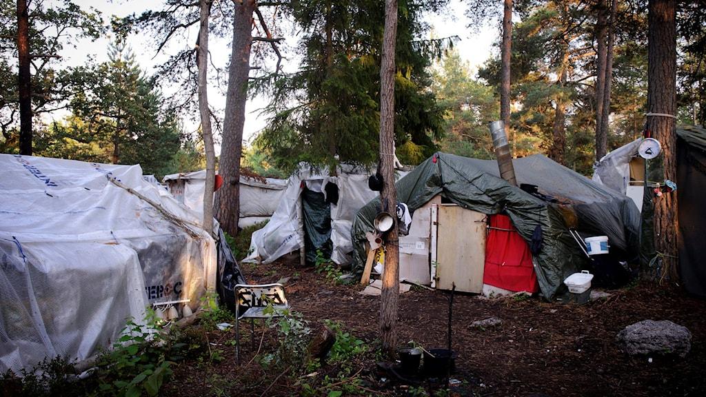 migrantläger Foto:ANNIKA AF KLERCKER / TT