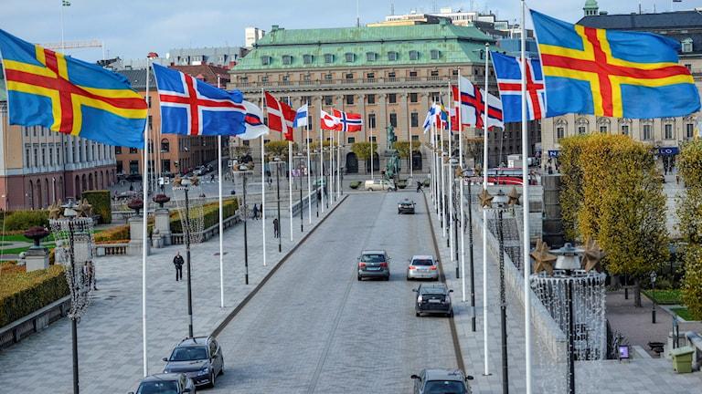 Nordiska Rådet Foto:HENRIK MONTGOMERY / TT