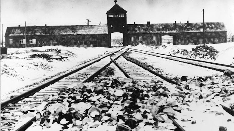 United Nations Hitler War Crimes
