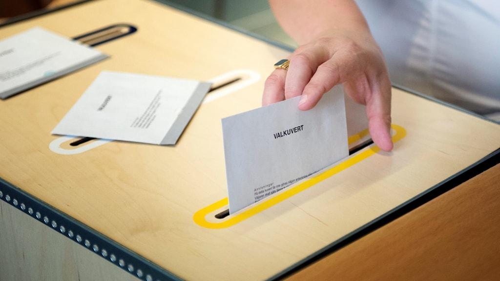 En hand som lägger en valsedel i en låda.