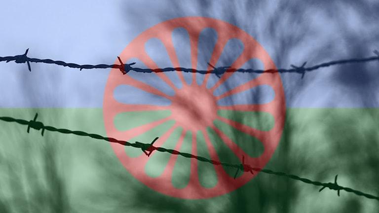 Rom tela Holocaust