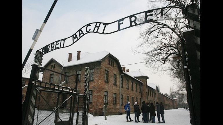 Auschwitz foto:Scanpix