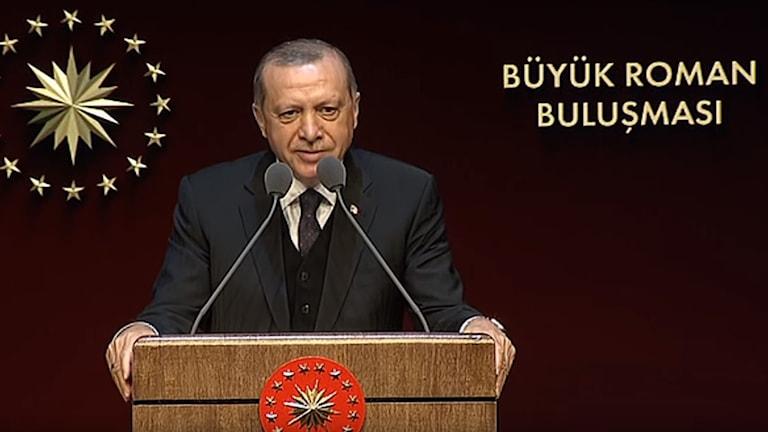 Recep Taip Erdogan - Baro Romengo Kedip ani Turkia