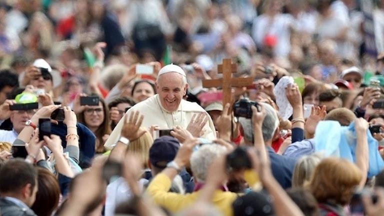 O Papa avel ando Svedo