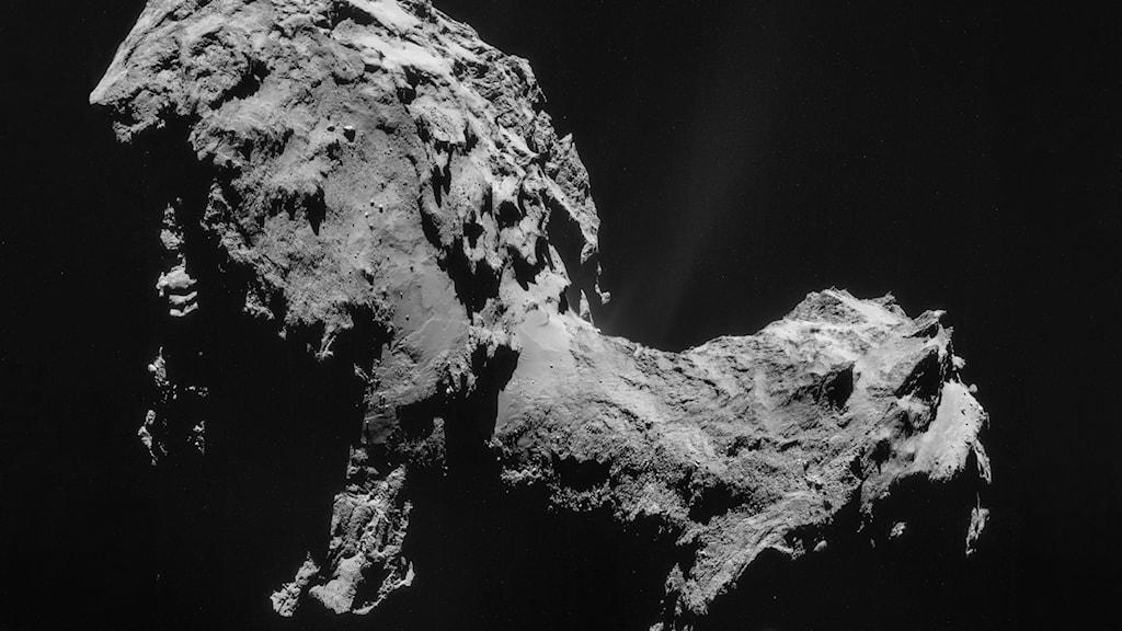 En bild på en komet, en grå sten, i mörka rymden.