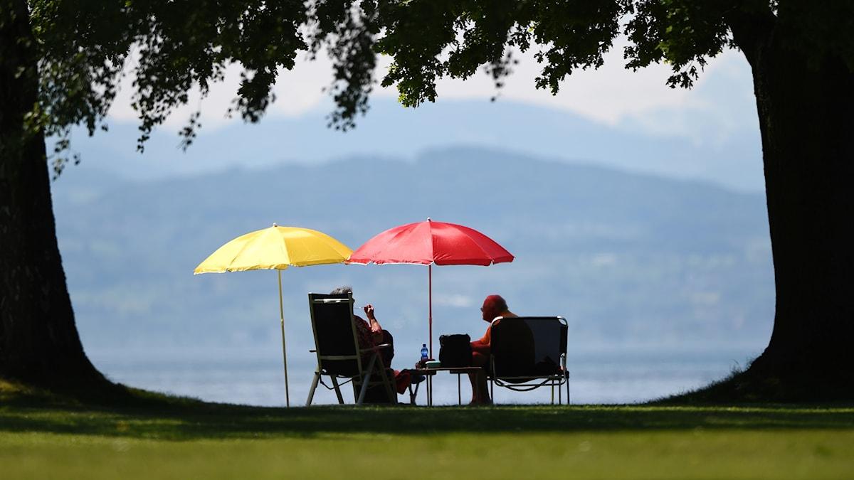 Par som sitter under parasoller i en park
