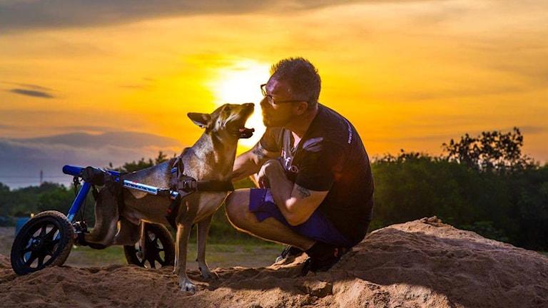 Värmlänningen Michael J Baines tar hand om hemlösa hundar i Bang Saen i Thailand.