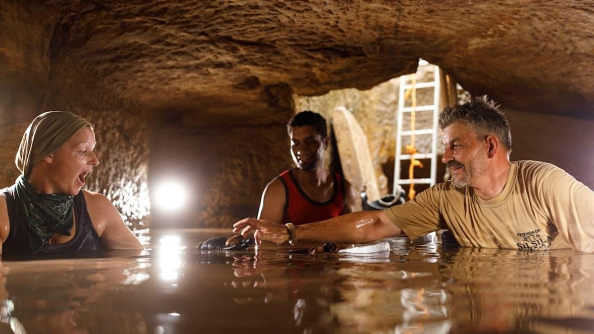 Tre personer undersöker en grav från forntida Egypten