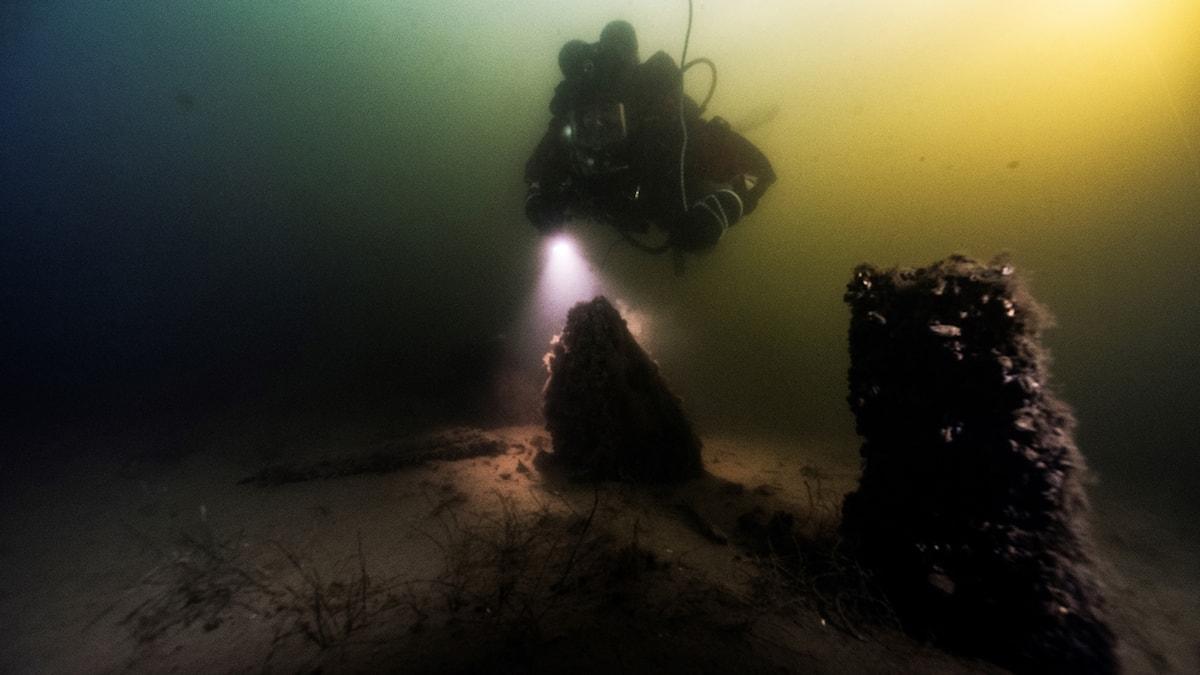 Dykare och ett vrak som sticker upp ur myllan på botten