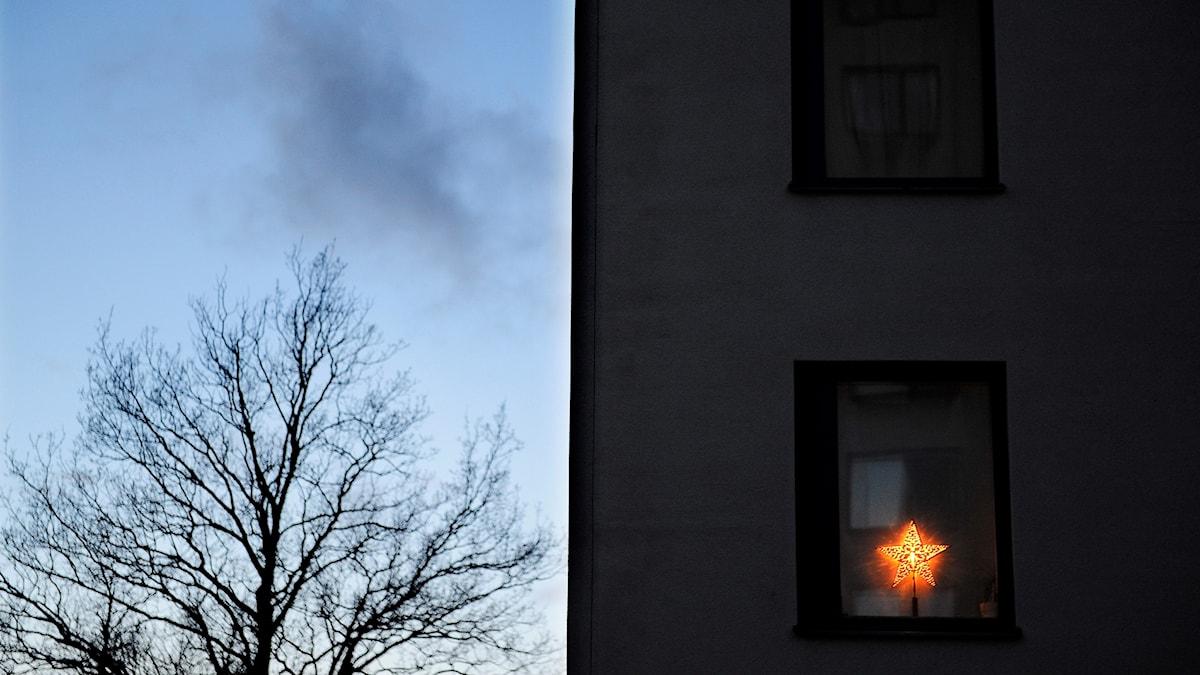 En adventsstjärna i ett fönster.