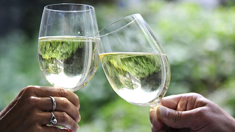 Två skålar i vitt vin. Foto: Anders Wiklund/TT.