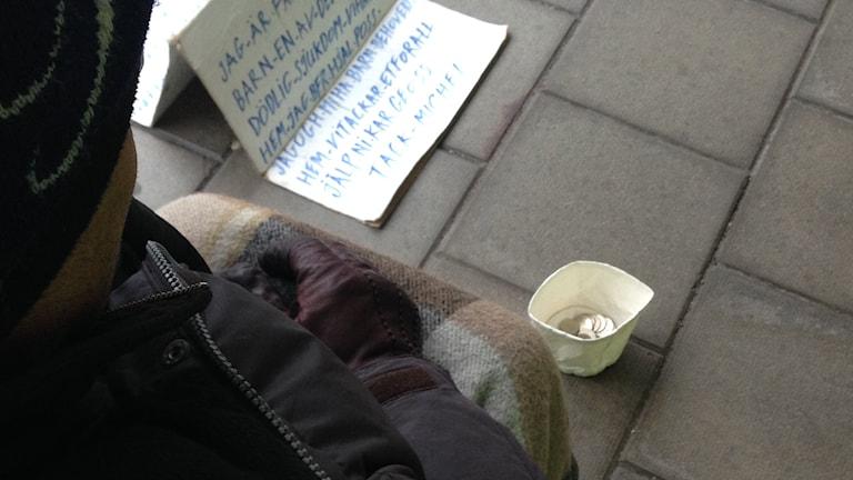 Tiggare. Foto: Åsa Stöckel/Sveriges Radio