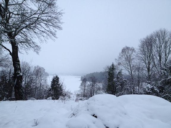 Från sjön Båven i Södermanland. Lyssnarbild: Marina Johannesson