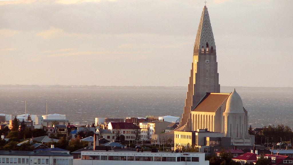 Piratpartiet skördar framgångar i Reykjavik och övriga Island. Foto:TT