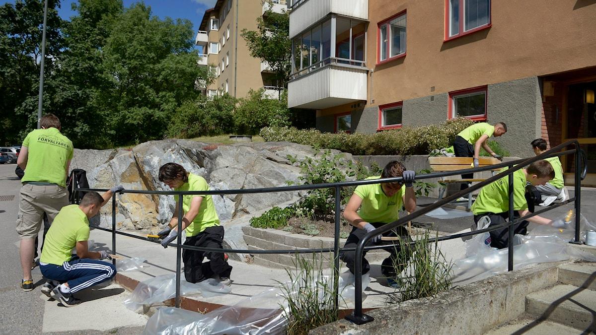 Sommarjobbande ungdomar. Foto: Janerik Henriksson/TT