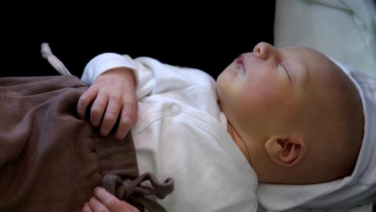 Baby sover. Foto: Hasse Holmberg/TT