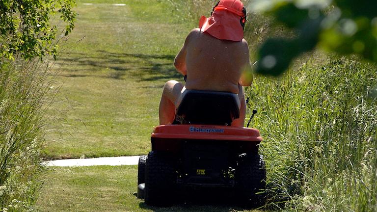 Man på åkgräsklippare. Foto: Hasse Holmberg/TT