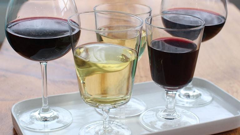 Olika viner i olika glas. Foto: Matthew Mead/AP Photo/TT