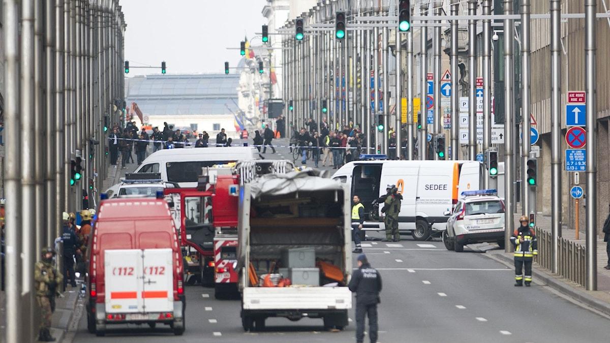 Centrala Bryssel