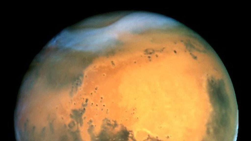 Planeten Mars. Foto, Wikimedia commons/Nasa.