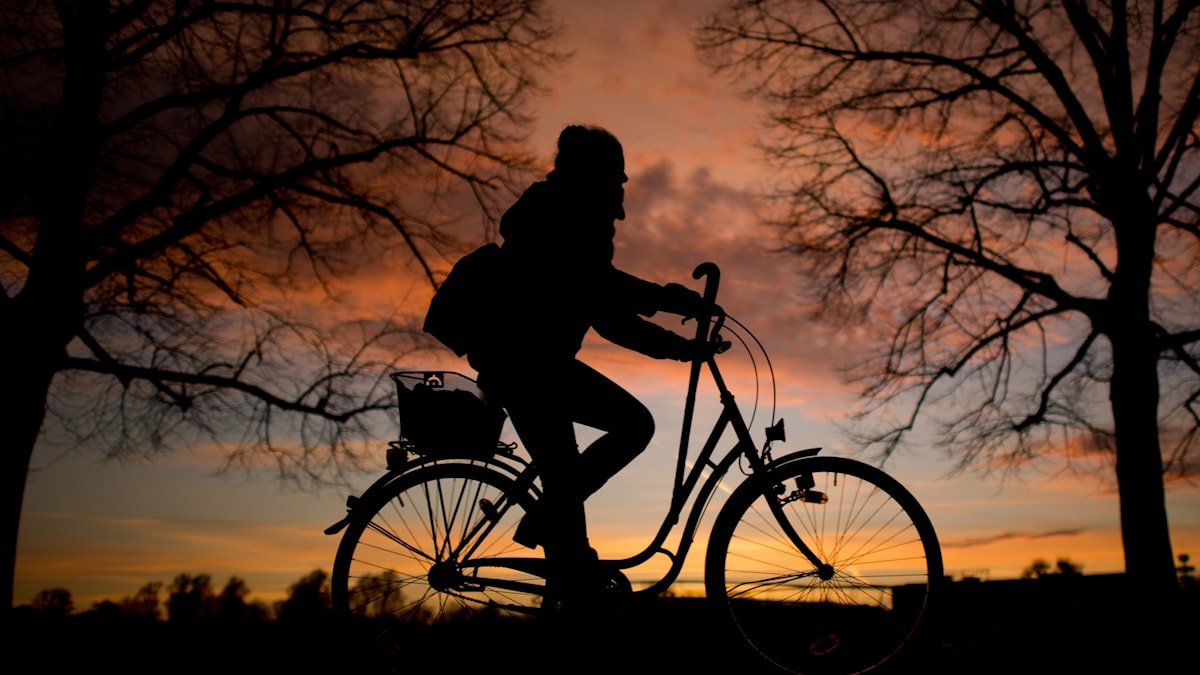 Cyklist, solnedgång.