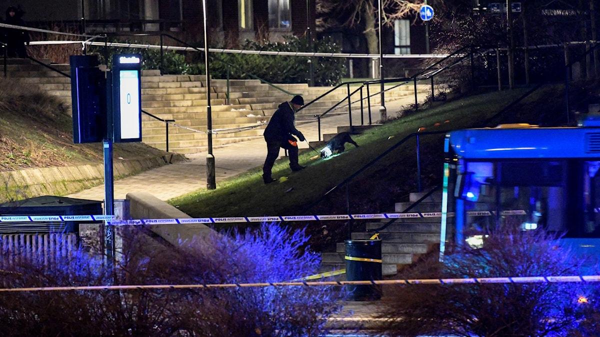 Polisen söker med vapenhund innanför avspärrningen vid en busshållplats på Amiralsgatan på Rosengård i Malmö efter en skottlossning på torsdagen, där en 16-åring avled.