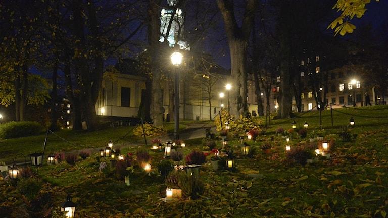 Tända ljus på kyrkogård vid Allhelgonahelgen.