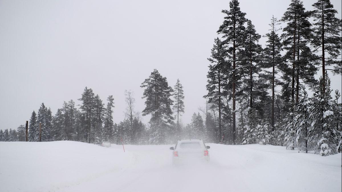 Snöig vinterväg i Mora