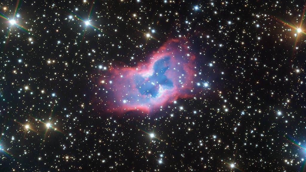 En bild på hundratals stjärnor. I mitten ett blågrönrött ljussken som liknar en fjäril.