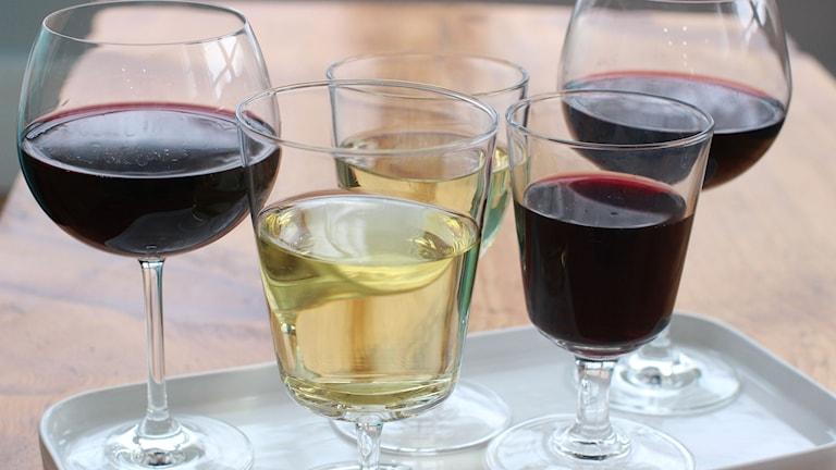 Röda och vita viner