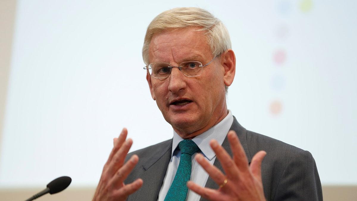 Carl Bildt