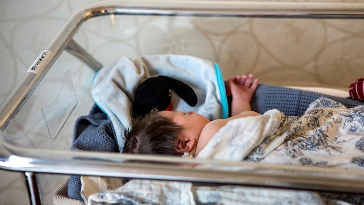 Nyfödd bebis ligger och sover.