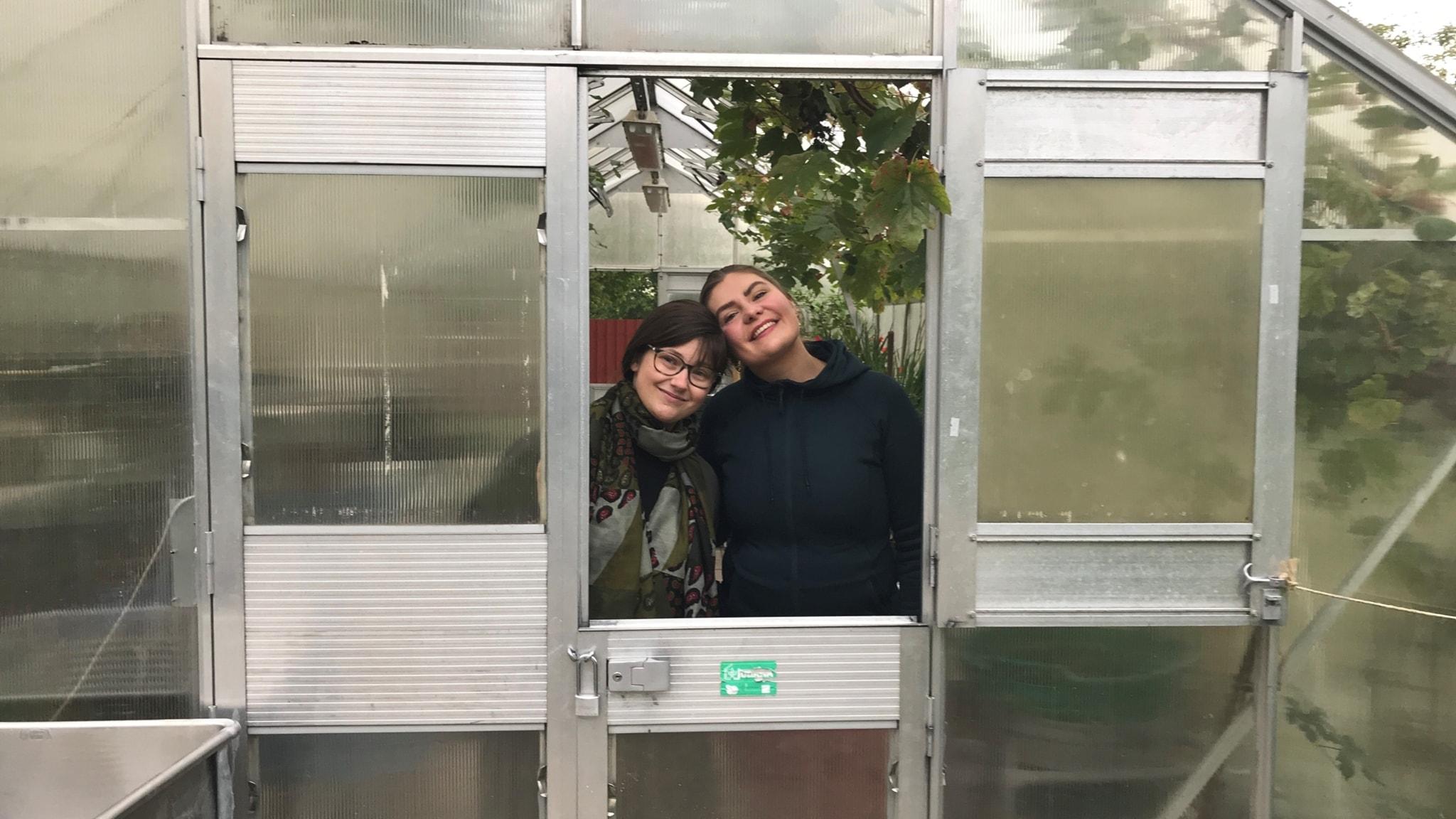 Johanna och Mimmi ska bestiga Kilimanjaro