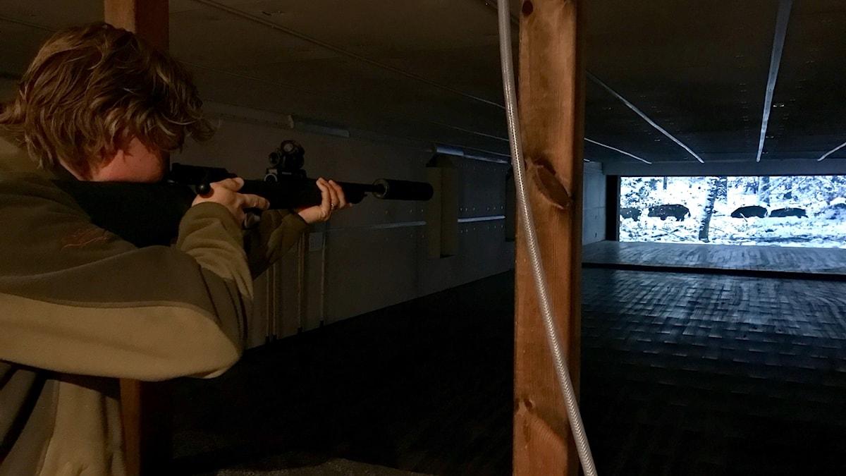 Gustav Rapp står med ett gevär och siktar på en film med vildsvin.